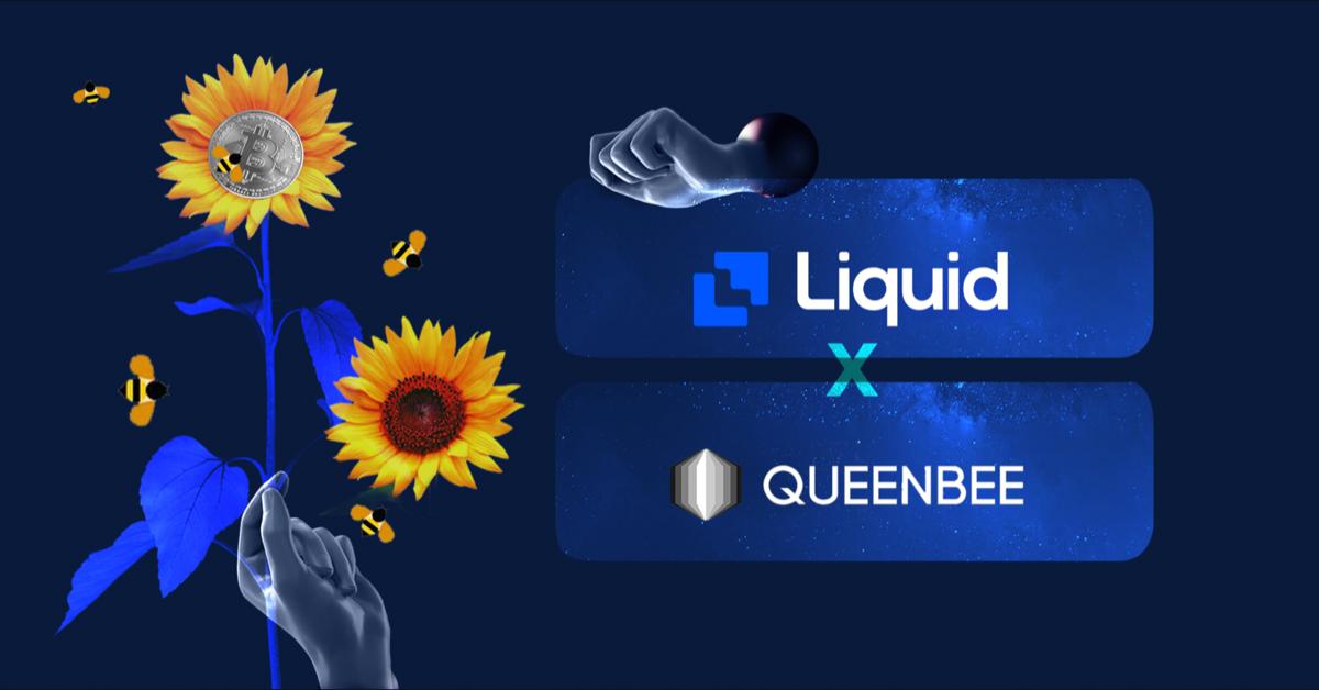 liquid x queenbee
