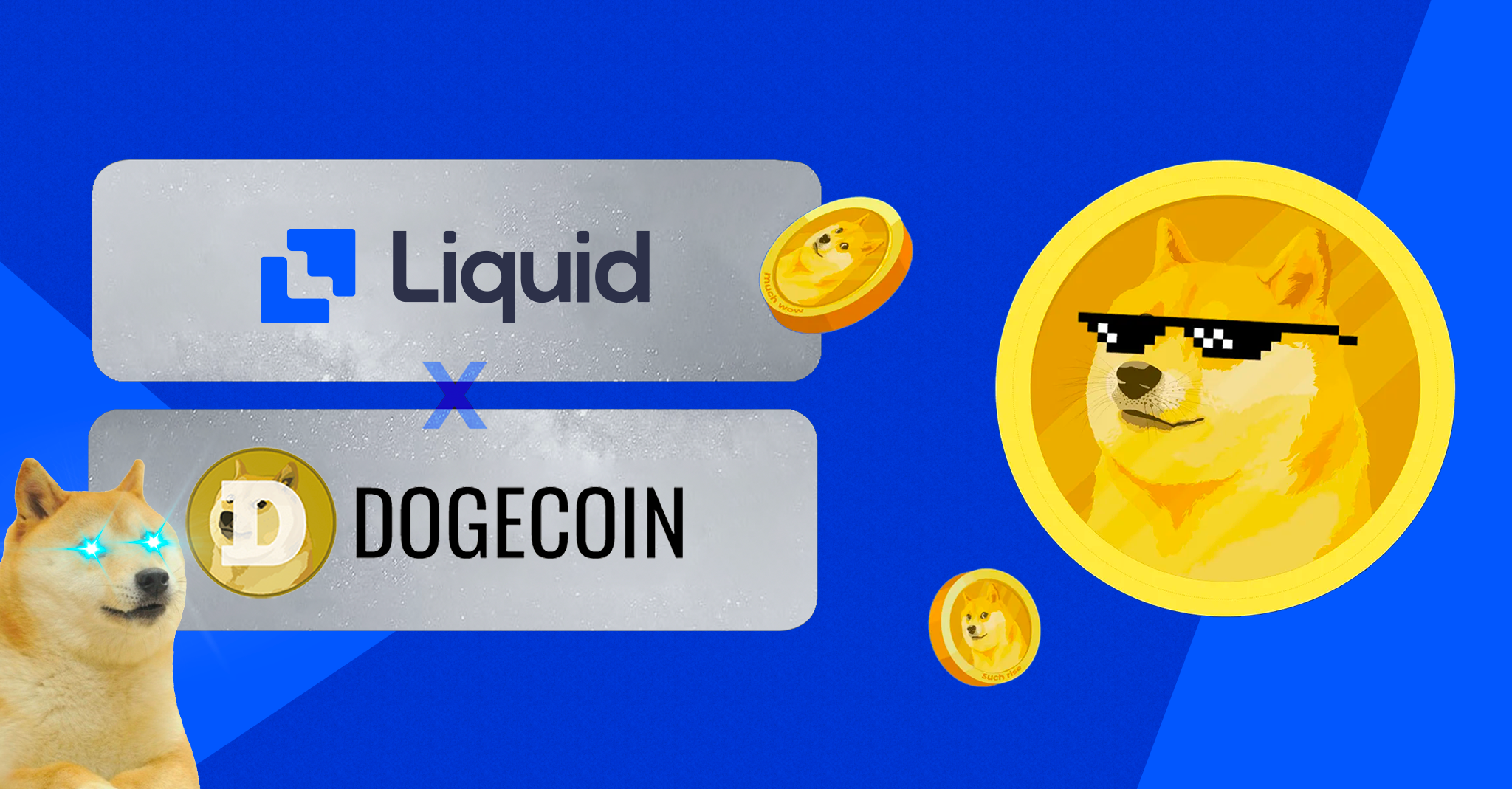 buy dogecoin on Liquid