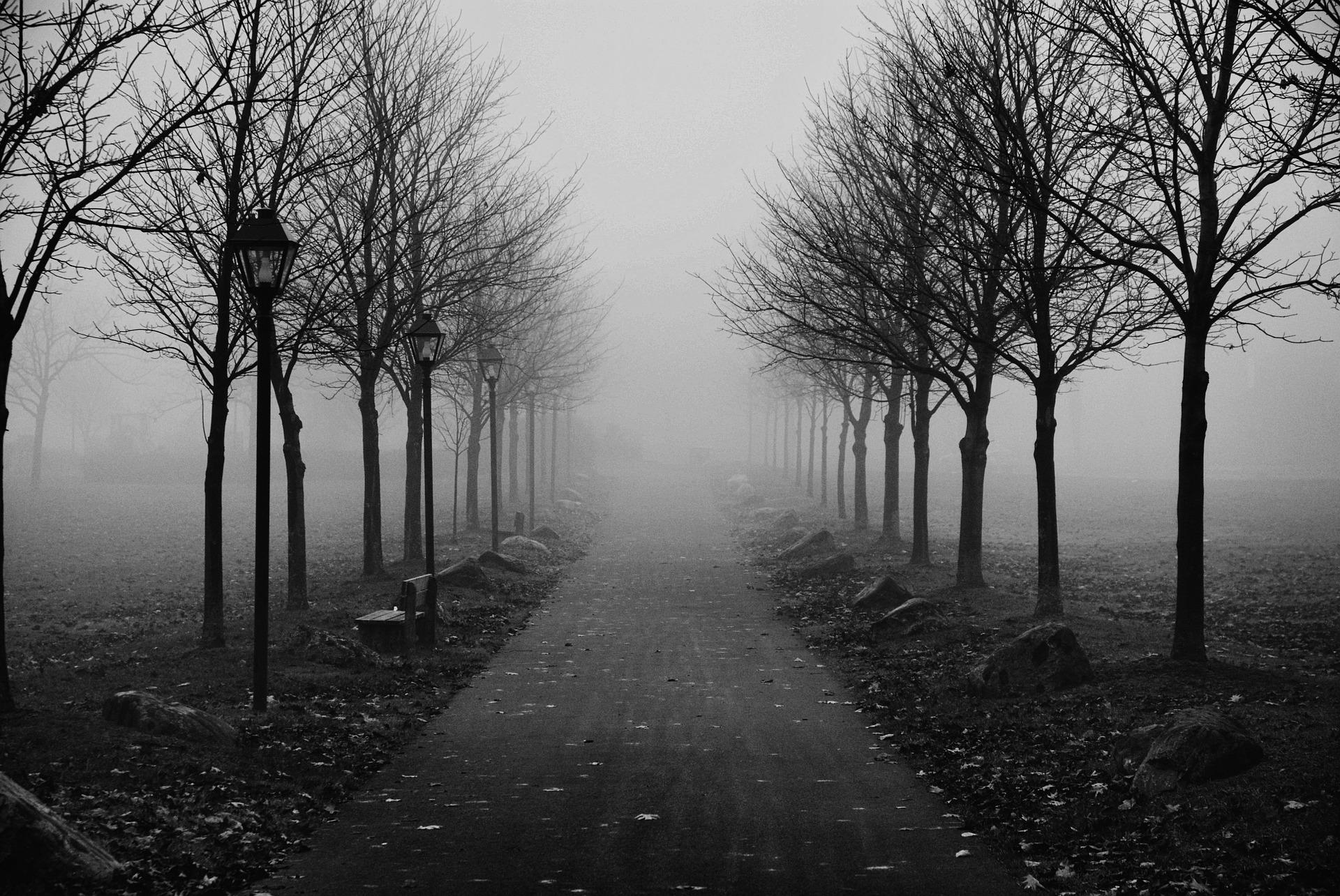 foggy-sidewalk-1123360_1920
